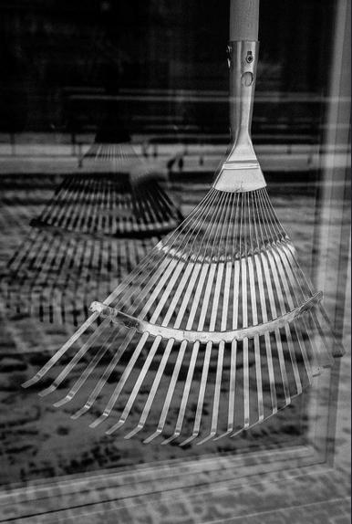 Eva Vošická, Reflections II, fotografie, 1 200 Kč (cena nezahrnuje tisk a adjustaci)