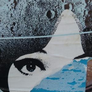 Strhaný plakát VI